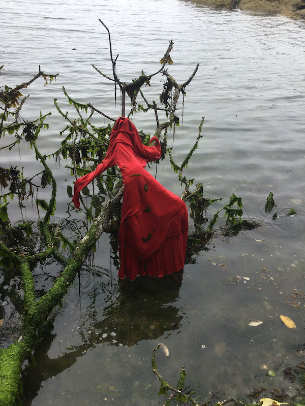 red-dress-on-tree